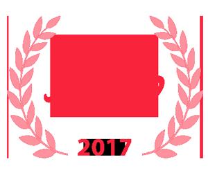 Best of Plano 2017